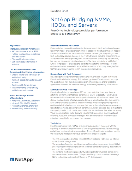 NetApp Enmotus Joint Solution Brief Tiering with NVMe