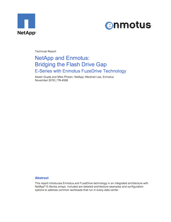 NetApp and Enmotus - Bridging the Flash Drive Gap